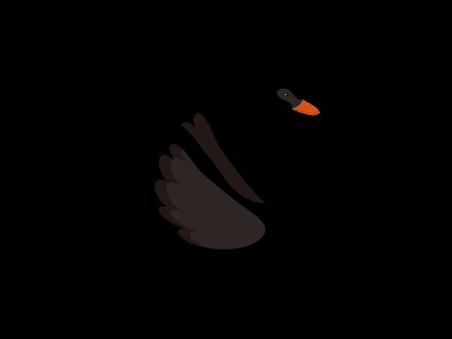 ブラックスワン(黒い白鳥)